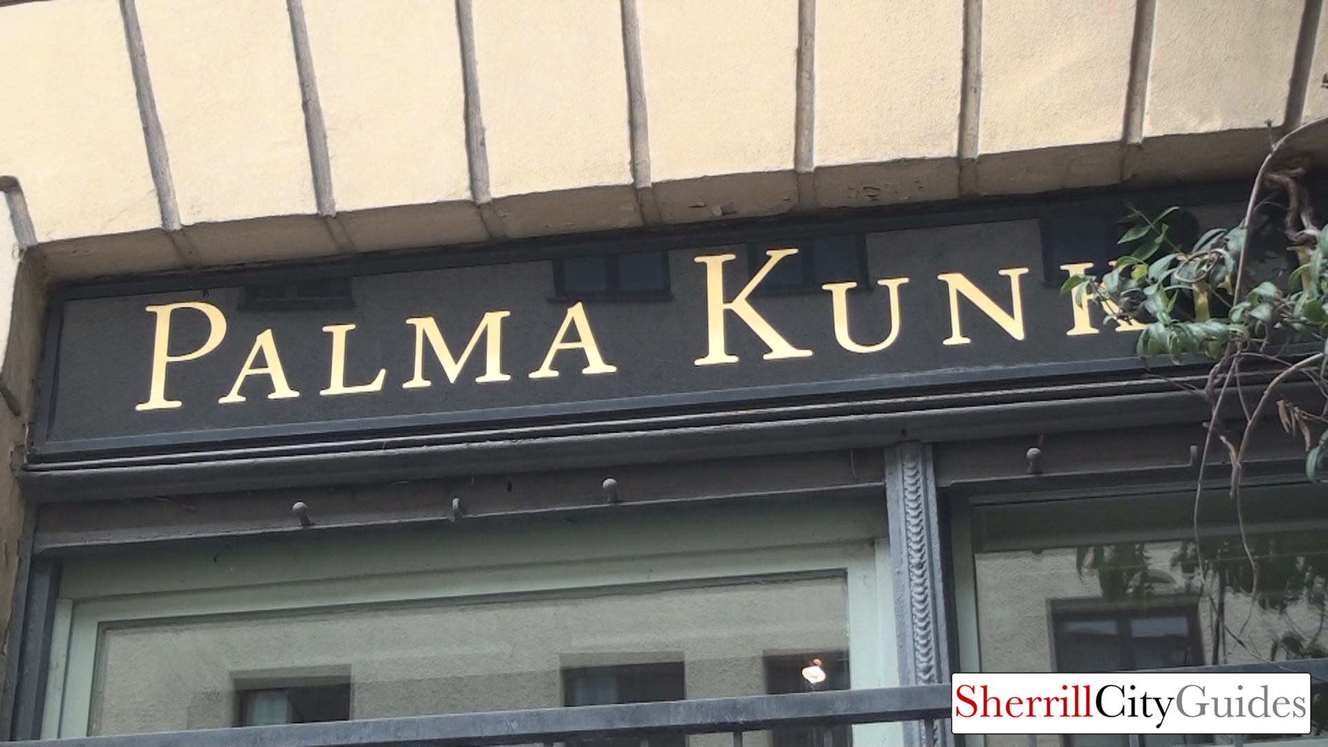 Palma Kunkel