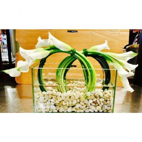 Richard Salome Flowers Calla Lily Dream