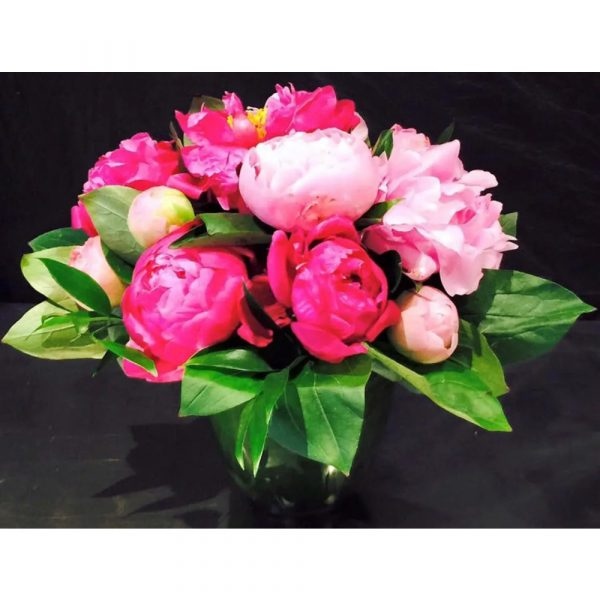 Richard Salome Flowers Pure Peony