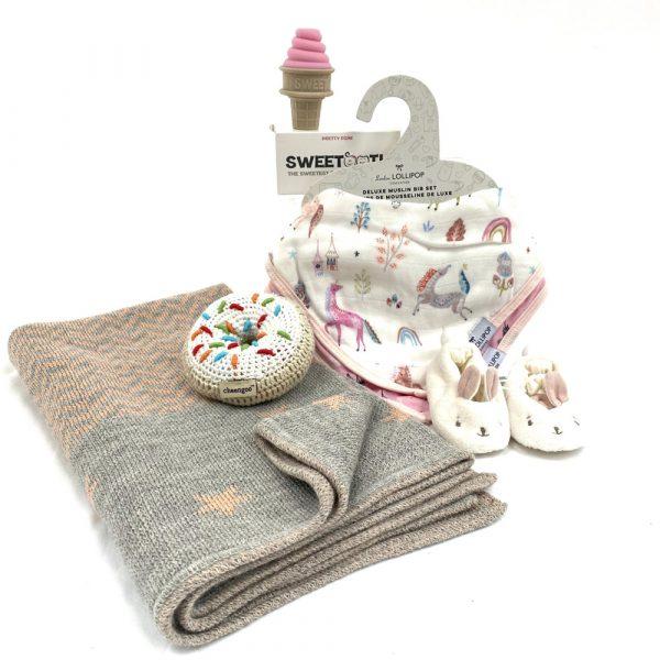 Teich Toys & Books Baby Luxurious Gift Set